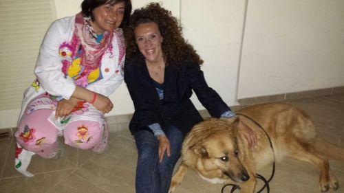 Pet therapy all'Ospedale di Vasto