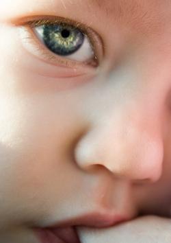 Screening cataratta congenita